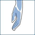 両手の指・甲 照射時間 約5分